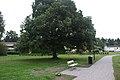 Olympiaplan Tallkrogen - panoramio.jpg