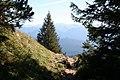 On the descent from Heimgarten - geo.hlipp.de - 28178.jpg
