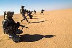 Operation Intrepid Centurion 140219-Z-AR422-024.jpg