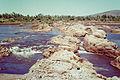 Ord River EW Digby-12.jpg