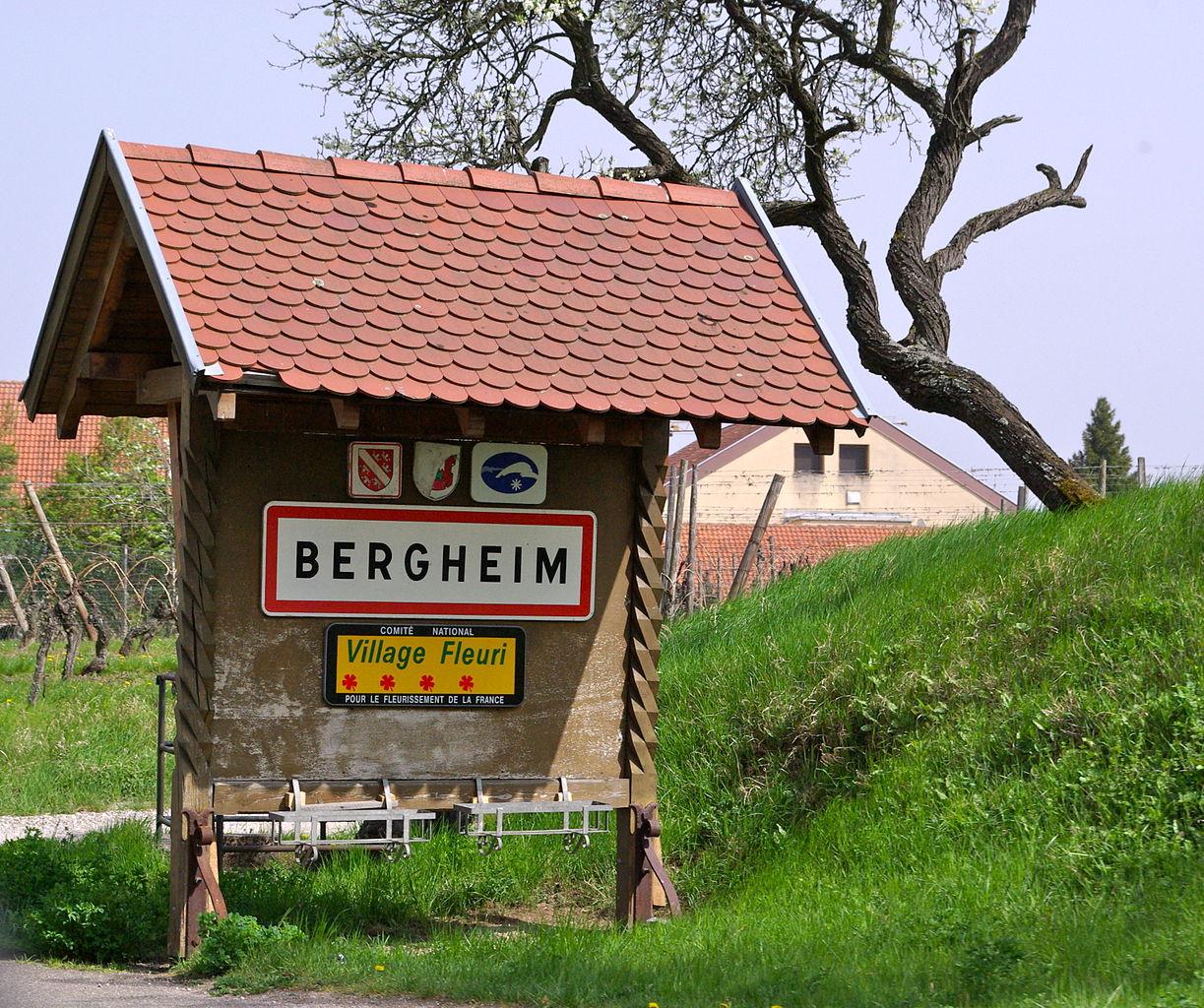 Bergheim single