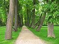 Ostafyevo park-5.JPG