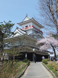 Kubota Domain
