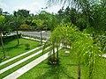 Othón P. Blanco, Quintana Roo, Mexico - panoramio (11).jpg