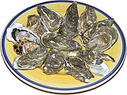 Raw oysters presented on a plate