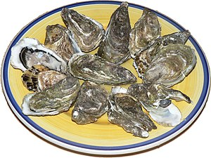 Shellfish - Raw oysters, opened, and presented on a plate