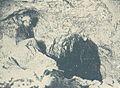 Pál-völgy Cave (Te).jpg