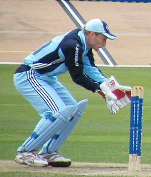 Peter Nevill - Nevill playing for New South Wales in 2008
