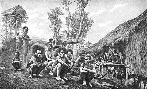 PSM V37 D629 Group of koyari chiefs southeast new guinea.jpg