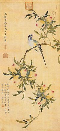 Цветы и птицы