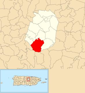 Palmarito Barrio of Corozal, Puerto Rico
