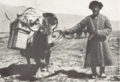 Pamir Mountains People (from a book Published in 1931) P.105.png