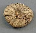 Papyrus Lid from Tutankhamun's Embalming Cache MET VS09.184.241C.jpeg