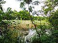Park prirode Kamaraš14.JPG