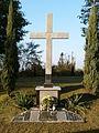 Pasieczna, cmentarz parafialny,krzyż misyjny (Aw58).JPG