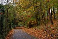 Path, Antrim town - geograph.org.uk - 596208.jpg