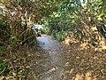 Path at Shadao, Pingtung 01.jpg