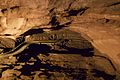 Peak Cavern 2015 49.jpg