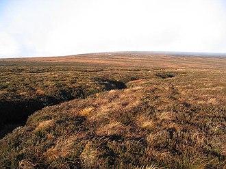 Peel Fell - Moorland, looking towards Peel Fell
