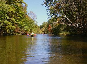 Pere Marquette River - Tourists canoeing on the Pere Marquette River in the Manistee National Forest.