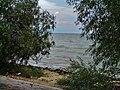 Petrushino, Rostovskaya oblast', Russia, 346842 - panoramio (5).jpg