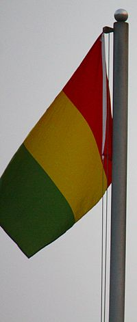 Photo Flag Guineas.jpg