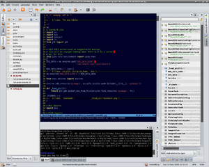 Screenshot of PIDA editing a Python file on Linux