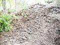 PikiWiki Israel 30944 Plowed land.jpg