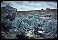PikiWiki Israel 68139 gethsemane and the old city.jpg