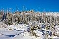 Plöckenstein Winter.jpg