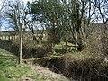 Plank for a footbridge at Well Rash Bridge - geograph.org.uk - 804510.jpg