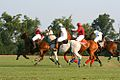 Polo At the Kentucky HOrse Park (5998792539).jpg