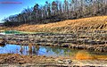 Pond-at-shut-ins.jpg - panoramio.jpg