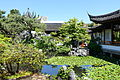Pond - Dr. Sun Yat-Sen Classical Chinese Garden - Vancouver, Canada - DSC09811.JPG