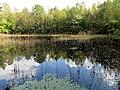 Pond Cameron NC 3862 (15567905709).jpg