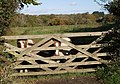 Ponies at Fremington - geograph.org.uk - 601365.jpg