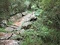 Ponte sobre o río Trimaz en Burgás.jpg