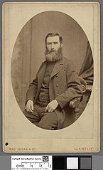 William Thomas Rees, 'Alaw Ddu'