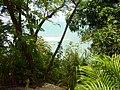Praia do Pipa - panoramio.jpg