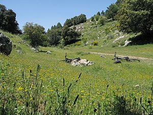 Primavera en bicicleta en el Parque Natural de la Sierra de Huetor.jpg