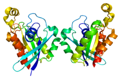 Protein RND1 PDB 2cls.png