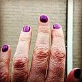 Purple. In honor of. (26505789152).jpg