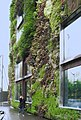 Quai Branly, Paris, France - panoramio.jpg