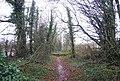 Quantock Greenway - geograph.org.uk - 1656646.jpg