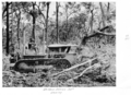 Queensland State Archives 4309 Bulldozer clearing at the Childers Soldiers Settlement 1950.png