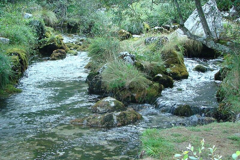 Archivo:Río Gándara.JPG