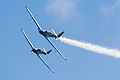 RIAS 2014 Blue Voltige 01.jpg