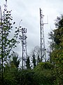 Radio masts near Tarrant Hinton - geograph.org.uk - 1028579.jpg