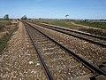 Railway line near Powderham - geograph.org.uk - 1223459.jpg