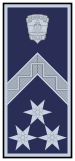 Rank Police Hungary SFC.svg